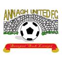 Escudos de fútbol de Irlanda del Norte 1