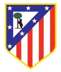 Escudos de fútbol de España 83