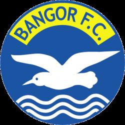 Escudos de fútbol de Irlanda del Norte 50