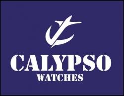 Logos de marcas de relojes 14