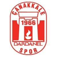 Escudos de futból de Turquía 11