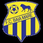 Escudos de fútbol de Rumanía 5
