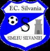 Escudos de fútbol de Rumanía 84