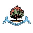 Escudos de fútbol de Irlanda del Norte 24