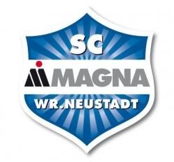 Escudos de fútbol de Austria 8