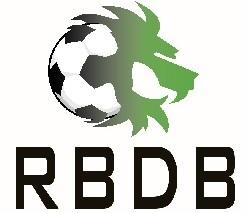 Escudos de fútbol de Bélgica 17
