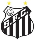 Escudos de fútbol de Brasil 31