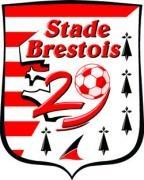 Escudos de fútbol de Francia 85