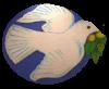 Escudos de fútbol de Aruba 13