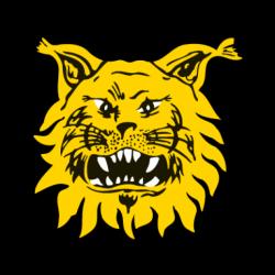 Escudos de fútbol de Finlandia 45