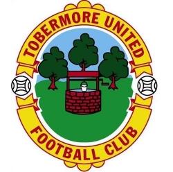 Escudos de fútbol de Irlanda del Norte 81